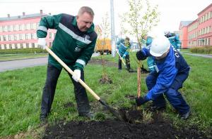 Акция «Миллион деревьев» продолжится в Москве в 2016 году