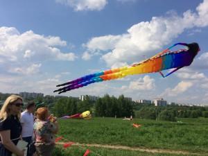 На фестивале были представлены воздушные змеи различных форм и размеров