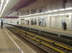 Перон станции метро Технопарк, расположенной в ЮАО