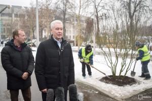 """Собянин проследил за ходом работ по озеленению """"Лужников"""""""