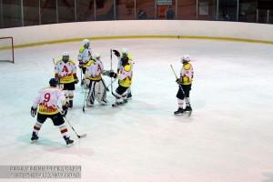 Матч по хоккею в ЮАО