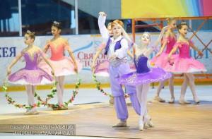 Ледовое шоу в ЮАО