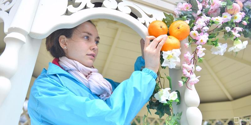 Соревнования садоводов-любителей прошли в рамках фестиваля «Цветочный джем»